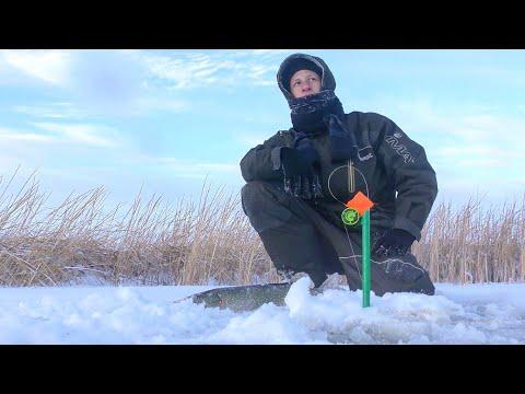 Щука на ЖЕРЛИЦЫ! ПЕРВЫЙ ЛЕД 2020-2021/ Окунь на балансир! Рыбалка на ТОНКОМ льду.