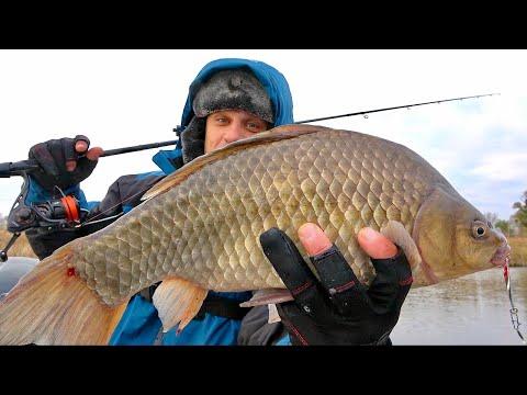 Рыбалка на карася поздней осенью! Караси монстры на блесну!