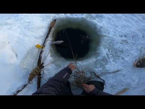 Рыбалка НАЛИМ! 12.11.2020 (20)