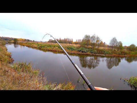 ТАКОЙ рыбалки ЕЩЁ НЕ БЫЛО! Жор КРУПНЫХ ЩУК на МАЛО-РЕЧКЕ! Рыбалка на спиннинг! 25 ЩУК с переката!