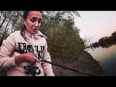 ОСТАВИЛИ КАРПОВИКИ НА НОЧЬ. АСТРАХАНЬ ОСЕНЬ 2020. Ловля диого сазана. Рыбалка в Астрахани 2020.