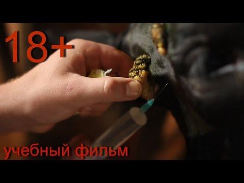 Удаление бородавок у тёлки. 18+ Surgical removal of papillomas