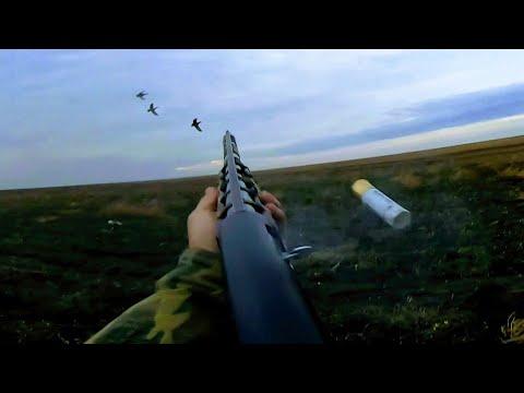 Охота с махокрылами на полосе ЁКЛМН Охота на уток 2020 осень Охота сухой ногой на поле Налеты 2020