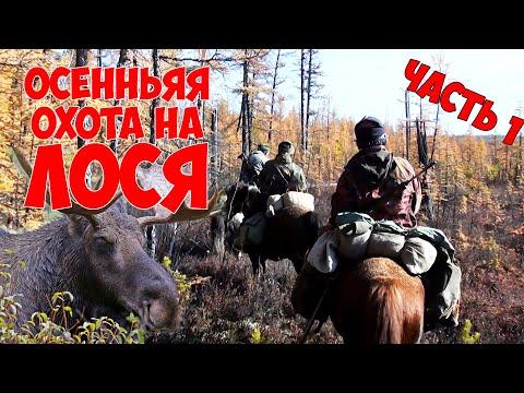 Осенняя охота на ЛОСЯ / ходовая охота верхом / ЧАСТЬ 1