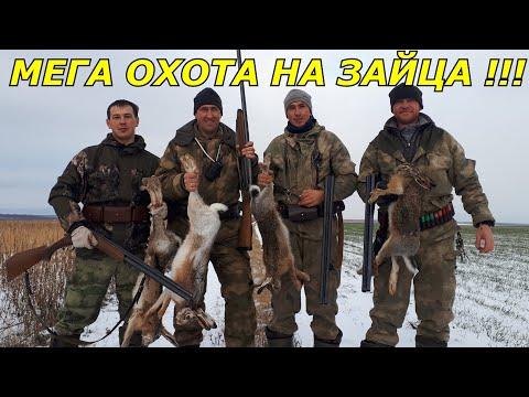 Мега охота на зайца!!!