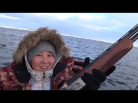 На охоту на морского зверя . День первый.