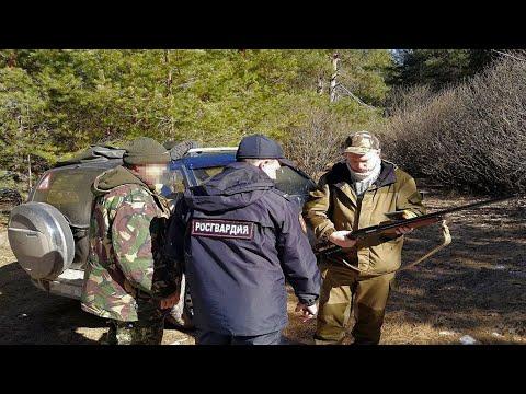 Как обойти правила охоты НАХОЖДЕНИЕ С ОРУЖИЕМ =ОХОТА. Обязательно к просмотру охотникам!!!!!!!