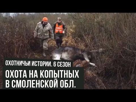 Охота НА КОПЫТНЫХ в Смоленской области \Охотничьи истории \ #15