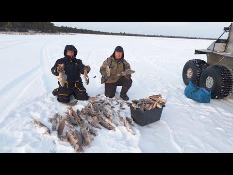 Это был НАШ ПЕРВЫЙ ЛЕД на таёжном озере. Зимняя рыбалка 2020-21.