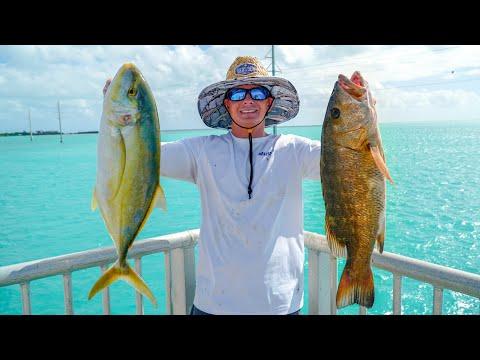 EPIC Fishing Spot! Catch Clean Cook (FL Keys Bridge Fishing)