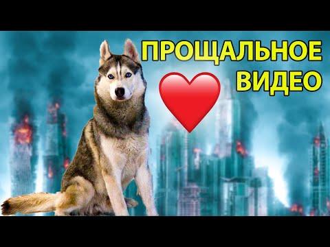 ПРОЩАЛЬНОЕ ВИДЕО С ХАСКИ... (Хаски Бандит) Говорящая собака