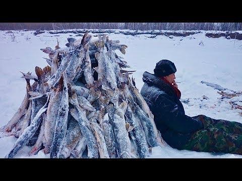#22 Необычные случаи на рыбалке!