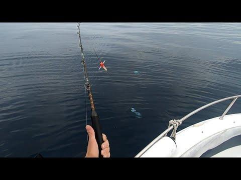 Ловля макрелевого тунца на троллинг. Pesca de Melva a curricán.
