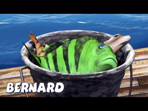 Бернард Медведь | рыбная ловля И БОЛЬШЕ | Мультфильмы для детей | Полные эпизоды