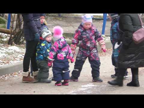 Погиб голубь. Трогательно... . Деревня Ликино, Щедрино. 03.12.2020. Рыбак Андрей Николаев.