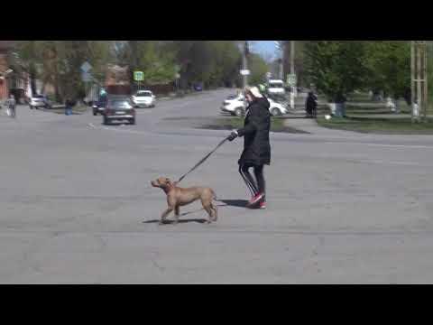 Знакомства в Новошахтинске без Регистрации девушки