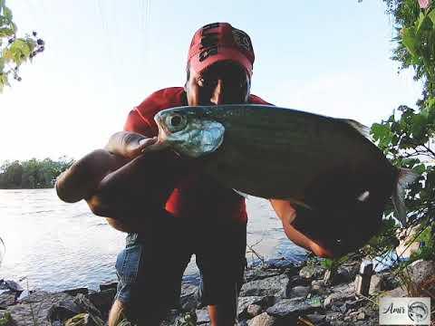 Fishing/ Fishing with worms/ Pêche/ Рыбная ловля/ ماهیگیری/ ماهیگیری با قلاب