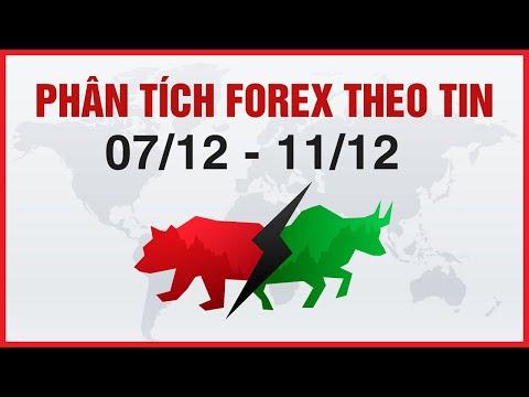 Nhận Định Forex (XAU, JPY, EUR, AUD, NZD) Theo Tin tuần 07/12 - 11/12 | invest318