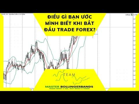 Điều gì bạn ước gì biết trước khi bắt đầu Trade Forex?