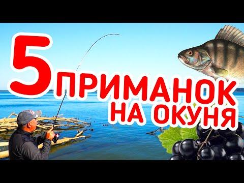 РЫБАЛКА НА 5 ПРИМАНОК! Рыба с каждого заброса! Ловля на микроджиг с берега