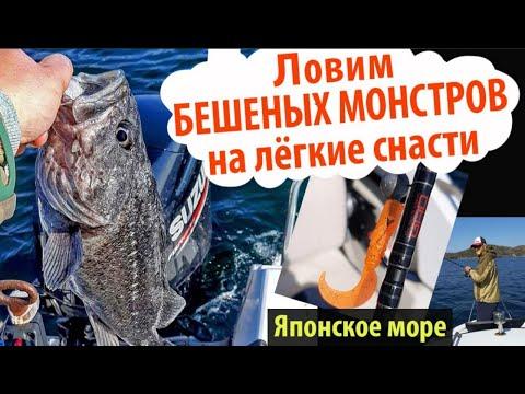 Ловля Окуней на РИФАХ! Сильная Рыба!