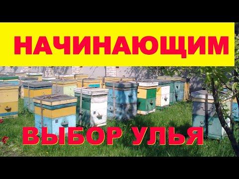 Как завести пчел Выбираем улей Лежак От А до Я #2