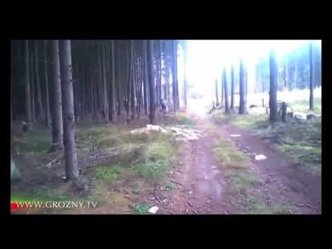 Чечня-Грозный 2020 г