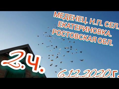 2.ч. ГОЛУБИ - В ГОСТЯХ У МЕДЕНЦА. Н.П. 6.12.2020.Г.