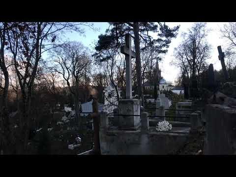 Прогулка с Natalex/259: на могиле прекрасного тенора и друга Ф. Шаляпина. #vilnius