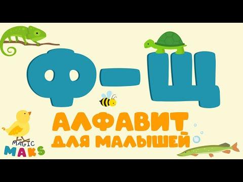 Учим АЛФАВИТ для малышей / Буквы Ф, Х, Ц, Ч, Ш, Щ / Учим животных / Игра с буквами /АЗБУКА для детей