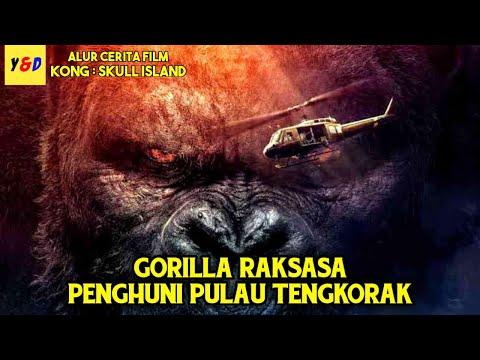 Pertarungan Kong Memperebutkan Tahta Di Pulau Tengkorak - ALUR CERITA FILM Kong Skull Island