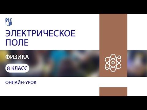 Физика. Электрическое поле