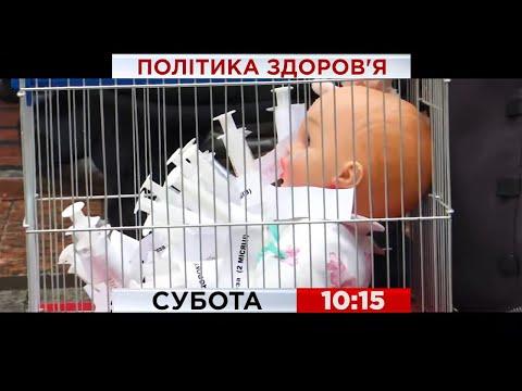 """Вторая волна пандемии и принудительная вакцинация: за и против? – """"Политика Здоровья"""", суббота,10:15"""