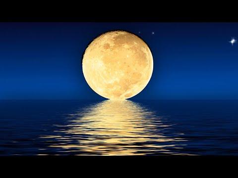 Sleep Music 24/7, Calming Music, Relaxing Music, Sleep Meditation, Zen, Deep Sleep Music, Study, Spa