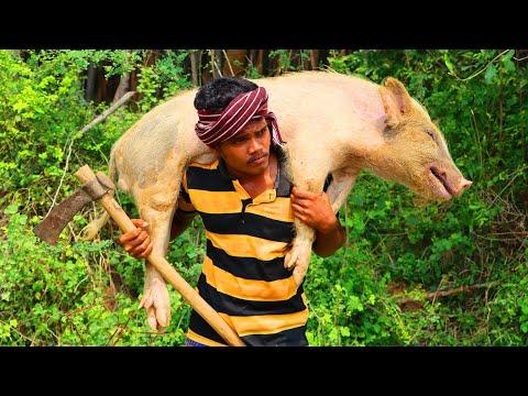 Primitive Technology: Village Land Pig Hunting Blood   Pork Fry Cook Eat Delicious   VILLAGE HUNTER