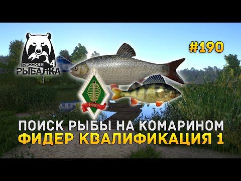Поиск рыбы на Комарином. Фидер Квалификация 1 - Русская Рыбалка 4 #189