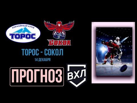 Торос - Сокол: прогноз на 14 декабря [ВХЛ] | Прогнозы на хоккей | Прогнозы на спорт на сегодня