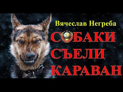 Собаки съели караван | 2020-12-20 20:03:59 | неглупый отстёгивание ca4a