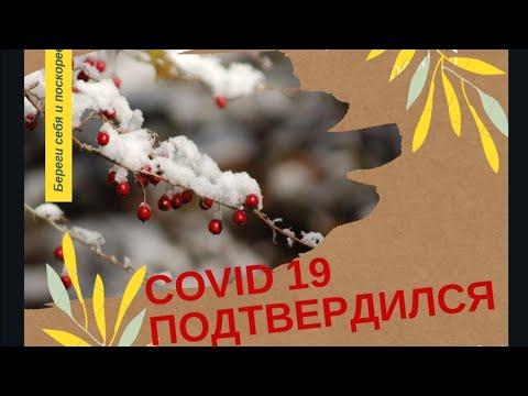 КОВИДНЫЙ ДНЕВНИК ДЕНЬ 5. КОРОНОВИРУС ПОДТВЕРДИЛСЯ   2020-12-20 20:11:27   необыкновенный гогот 7b13