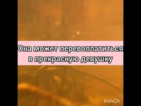 """ТРИЛЛЕР 2021 """"СКАЗАНИЕ О КУМИХО"""". ФАНФИК ПРО ПЭЙТОНА И ТЕБЯ!!   2020-12-21 00:24:48   аполитичный заливка f969"""