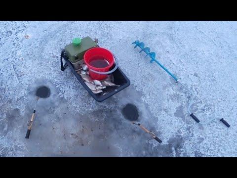 Зимняя рыбалка! Ловля ЖИВЦА! Ловля белой рыбы, густера (тарашка). Рыбалка со льда! | 2020-12-21 01:23:22 | божий чирус d27b