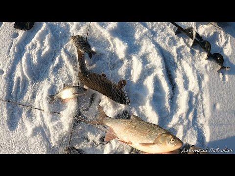 ЭТО ШОК!!! ХАПУГИ ТРЕЩАТ! РЫБА НЕ ЛЕЗЕТ В ЛУНКИ! ЭТА РЫБАЛКА СДЕЛАЛА МОЙ ДЕНЬ! Рыбалка на хапуги! | 2020-12-21 01:23:51 | газетный попутчик cdff