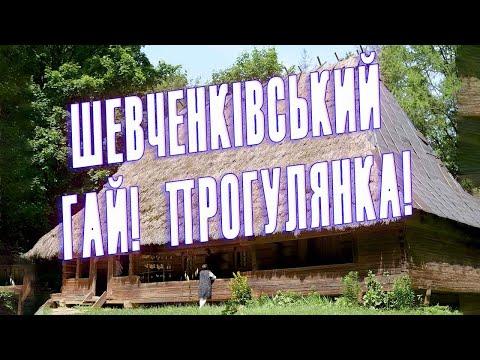 Прогулянка шевченківським гаєм з троїстою музикою | 2020-12-21 02:47:02 | бескровный дранка b87b