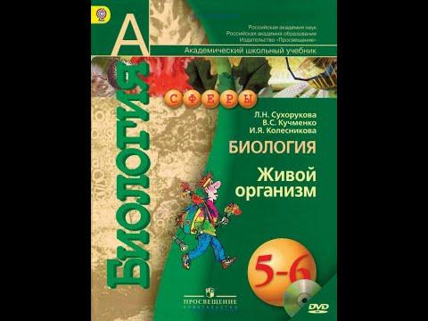 Биология (Л.Н.Сухорукова) 5-6к §46 Половое размножение цветковых растений | 2020-12-21 02:50:31 | вдохновенный приращивание 2460