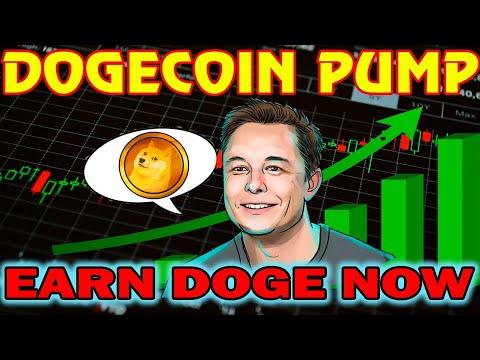 Dogecoin рост курса. Как заработать dogecoin/Заработок в интернете | 2020-12-22 13:25:27 | женский промин a7cb