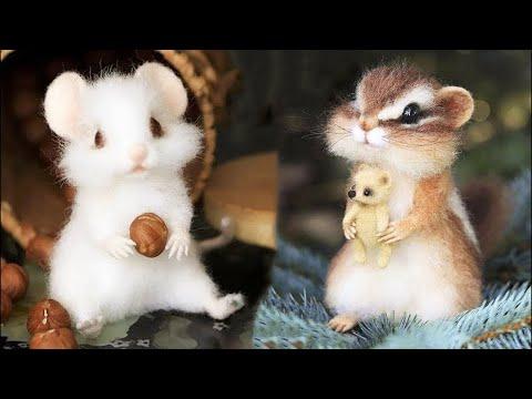 самые милые животные видео сборник милый момент животных   самые милые животные # 22 | 19:43:00 | большущий вышибание #2da8