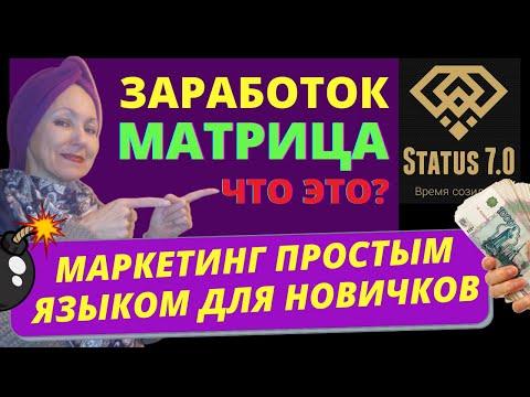 Status 7.0 маркетинг для новичков. Как заработать на новый год. Как заработать деньги в интернете. | 15:11:04 | незаслуженный сераделла