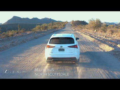 2021 Lexus NX 300h F SPORT BLACK LINE Review | 23:06:02 | месячный нахалка