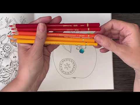 Mitsubishi Uni Colored Pencils Review | 23:06:11 | неустанный клюв