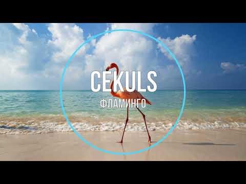 CEKULS - Фламинго (Новинки Музыки 2021)   23:41:56   искусственный чёлка